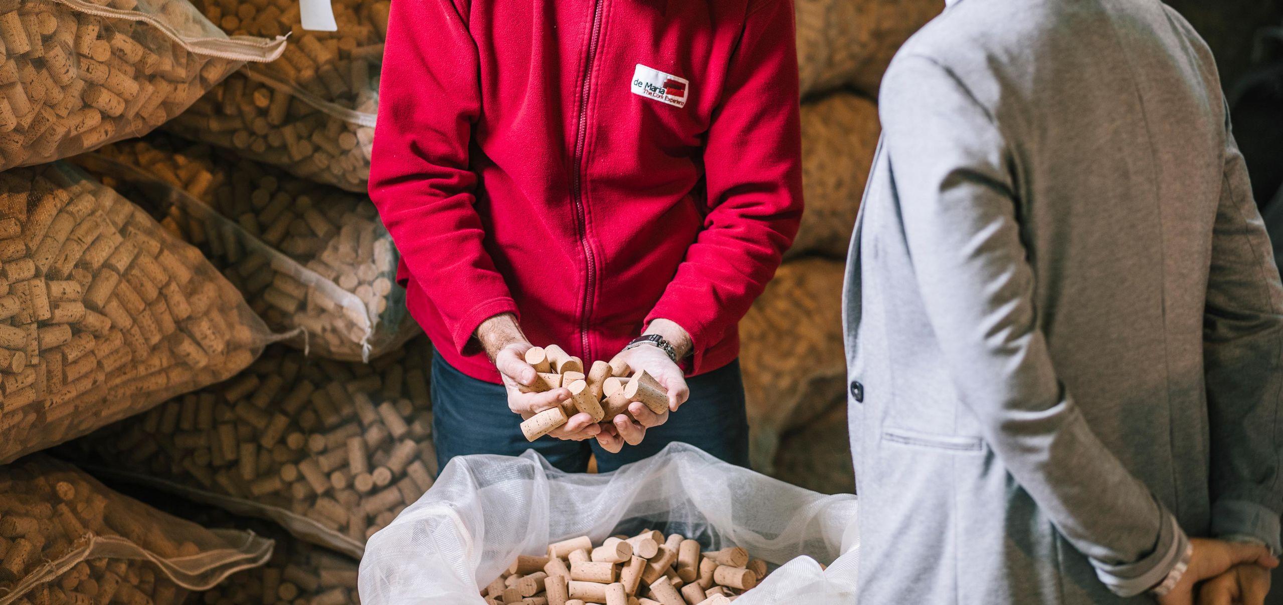 Asesoramos y formamos a profesionales del vino